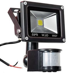 GLW 12V AC or DC LED Motion Sensor Flood Light,10W Mini IP65