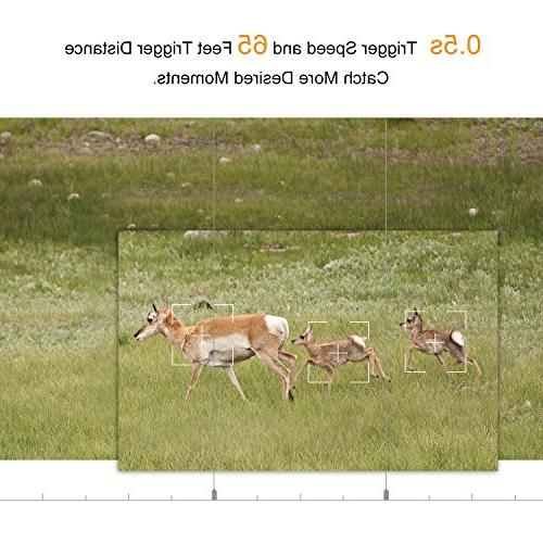 Trail Game Vision Hunting 0.5s Trigger Speed and 65 Feet Distance, Weatherproof Motion Sensor Wildlife Surveillance